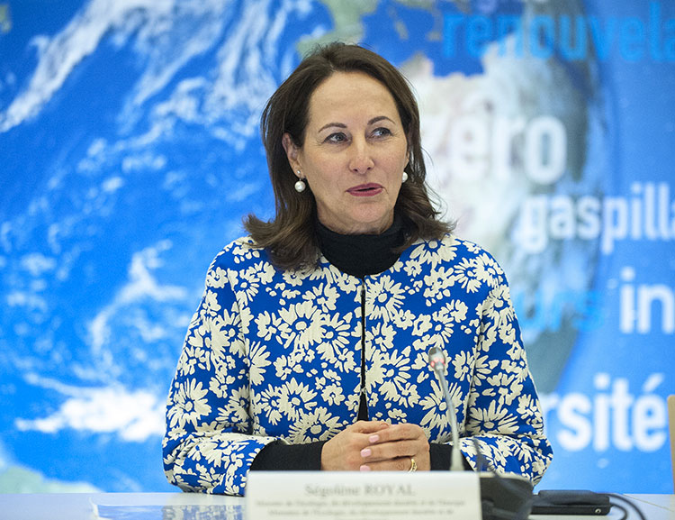 think-smartgrids-greentech-startup-segolene-royal