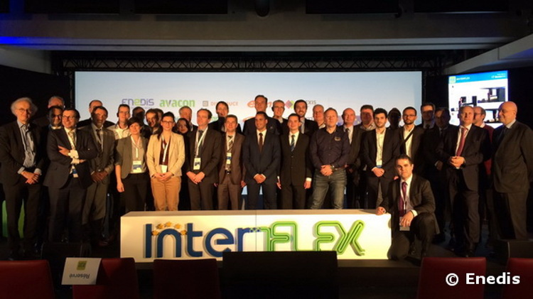 Think Smartgrids interflex distributeurs europe demontrateur