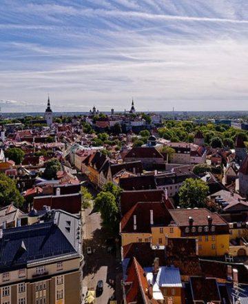 Think Smartgrids appel Tallinn commission Europe gouvernements entreprises digitalisation énergie
