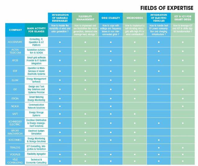 Think Smartgrids tableau compétences membres